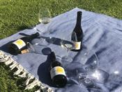 3-pack Chardonnay Vertical