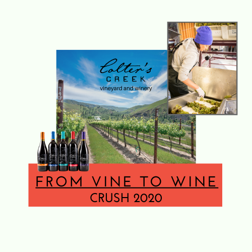 Vine to Wine Crush 2020 4PM
