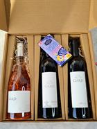 Valentine's Bundle: Rosé Grand Klasse + The Don + Malbec + Chocolate Bar