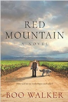 Book - Red Mountain by Boo Walker